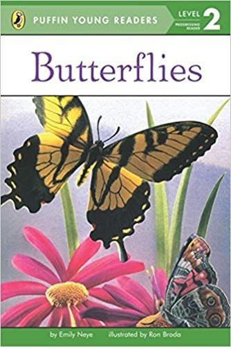 PYR(Lvl.2): Butterflies