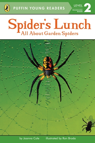 PYR(Lvl.2): Spider's Lunch